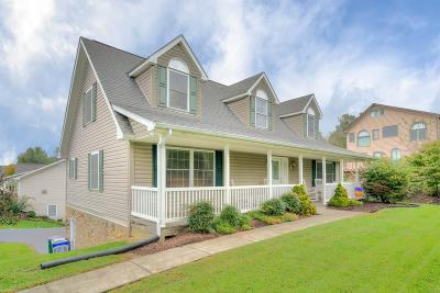 Montgomery County Single Family Home For Sale: 95 Morning Star Lane
