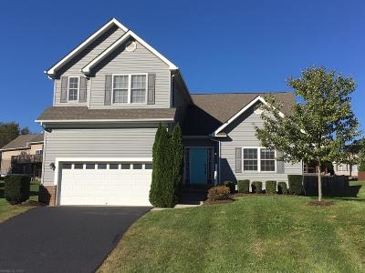 Montgomery County Single Family Home For Sale: 210 Meadow Drive