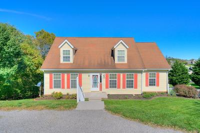 Radford Single Family Home For Sale: 516 Meadow Ridge