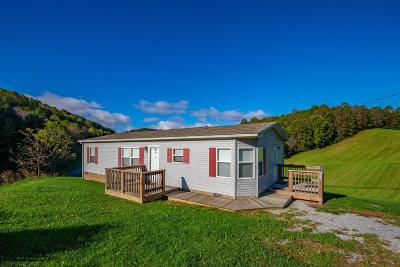 Wythe County Single Family Home For Sale: 138 Kegley Lane