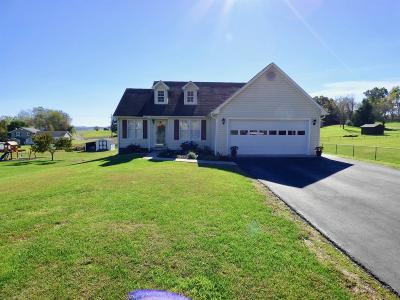 Wythe County Single Family Home For Sale: 190 Gilland Road