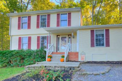 Radford Single Family Home For Sale: 7498 James Way