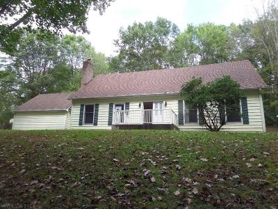 Floyd County Single Family Home For Sale: 7515 Indian Valley Road