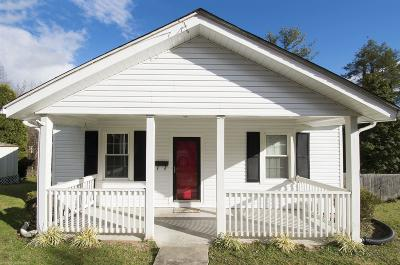 Pulaski County Single Family Home For Sale: 810 Monroe Avenue
