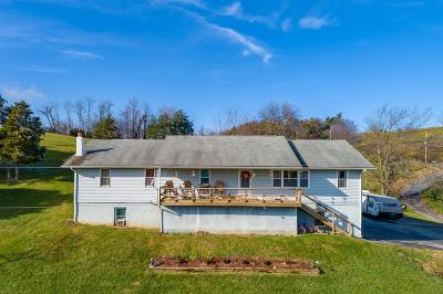 Wythe County Single Family Home For Sale: 906 Cinnamon Run Road