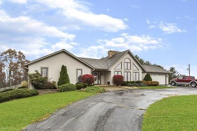 Floyd County Single Family Home For Sale: 3368 Bethlehem Church Road