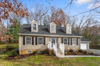 Christiansburg Single Family Home For Sale: 390 Arrowhead Trail