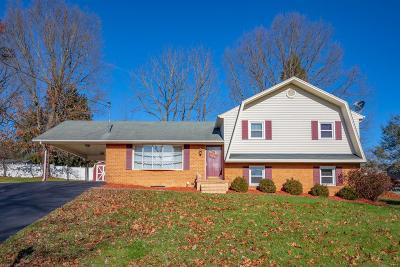 Christiansburg Single Family Home For Sale: 545 Chinquapin Trail