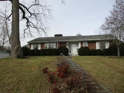 Pulaski Single Family Home For Sale: 153 Oakland Drive