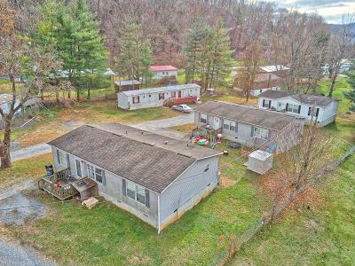 Giles County Single Family Home For Sale: 145 Parker Drive