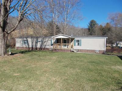 Wythe County Single Family Home For Sale: 123 Swallow Hollow Road
