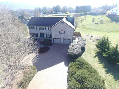 Wythe County Single Family Home For Sale: 175 Eagle Drive