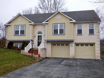 Wythe County Single Family Home For Sale: 850 Wythview Drive