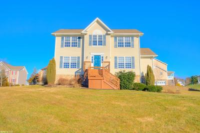 Christiansburg Single Family Home For Sale: 735 George Edward Viaduct