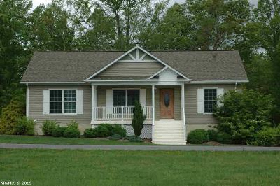 Giles County Single Family Home For Sale: 137 Prairie View Lane