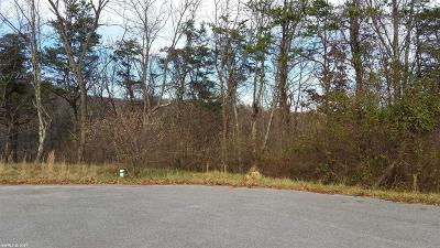 Christiansburg Residential Lots & Land For Sale: 90 Florence Drive