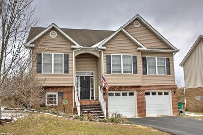 Montgomery County Single Family Home For Sale: 75 Alexander Court
