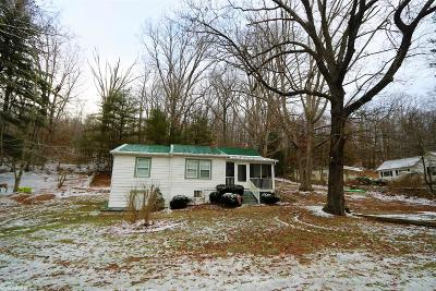 Radford Single Family Home For Sale: 3080 Peppers Ferry Road