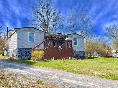 Radford Single Family Home For Sale: 7113 Falling Branch Road