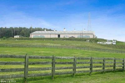 Christiansburg Farm For Sale: 1771 Flanagan Drive