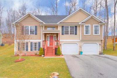 Christiansburg Single Family Home For Sale: 1044 St Clair Lane