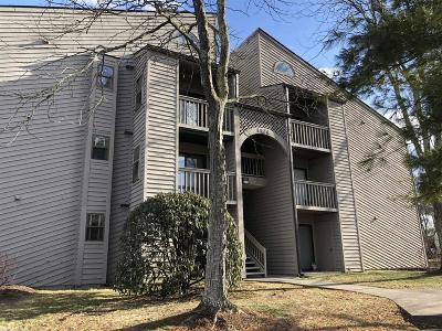 Blacksburg Condo/Townhouse For Sale: 1404 University City Boulevard