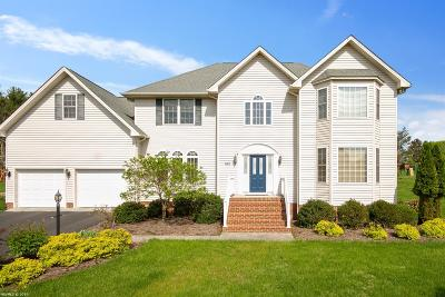 Blacksburg Single Family Home For Sale: 2740 Green Meadow Drive