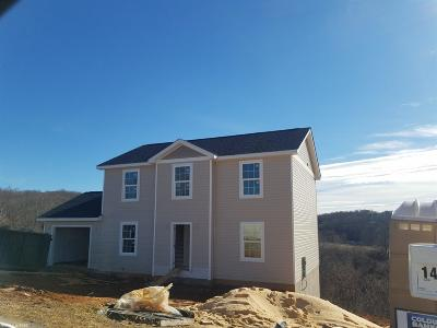 Giles County Single Family Home For Sale: 147 Prairie View Lane