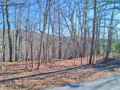 Blacksburg Residential Lots & Land For Sale: Lot 11 Susannah Drive