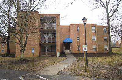 Blacksburg VA Condo/Townhouse For Sale: $99,900