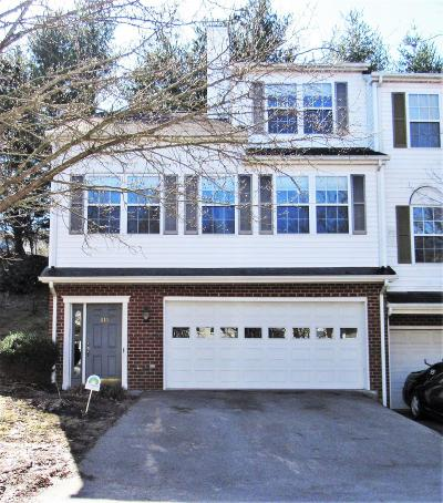 Christiansburg VA Condo/Townhouse For Sale: $194,900