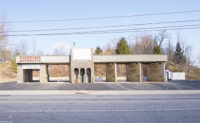 Christiansburg Commercial For Sale: 45 Depot Street