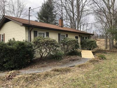 Pulaski VA Single Family Home For Sale: $124,900