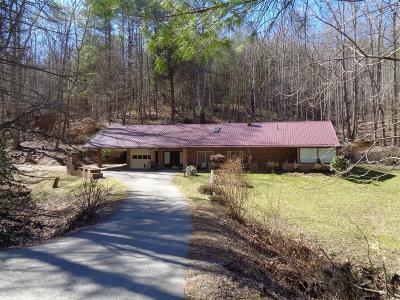 Riner Single Family Home For Sale: 358 Camp Creek Road