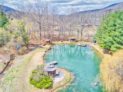 Giles County Residential Lots & Land For Sale: 1310 Spruce Run Road