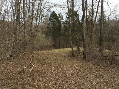 Giles County Residential Lots & Land For Sale: Riverview Lane