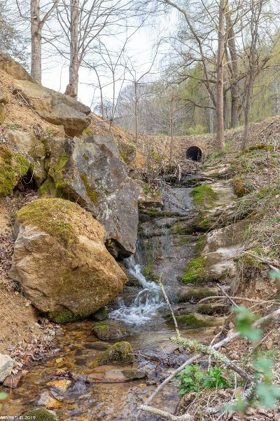 Giles County Residential Lots & Land For Sale: 339 Spruce Run Road