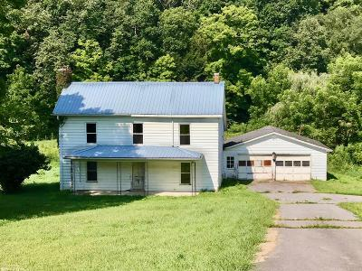 Wythe County Single Family Home For Sale: 3911 Cedar Springs Road
