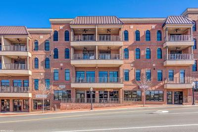 Montgomery County Condo/Townhouse For Sale: 301 S Main Street