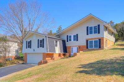 Blacksburg Single Family Home For Sale: 1722 Plank Drive