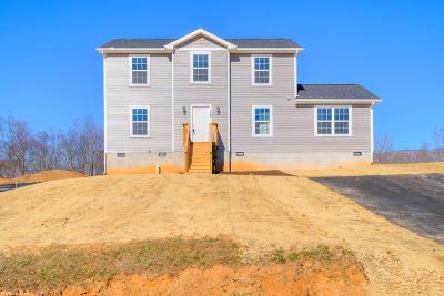 Giles County Single Family Home For Sale: 128 Prairie View Lane