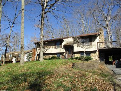 Christiansburg Single Family Home For Sale: 1045 Flint Drive