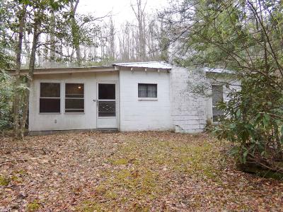 Giles County Single Family Home For Sale: 161 Moonshine Lane