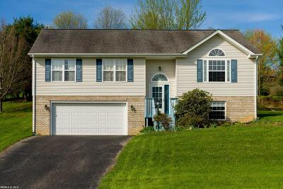 Christiansburg Single Family Home For Sale: 200 Wooden Shoe Court Court