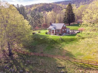 Giles County Single Family Home For Sale: 167 Knob Mountain Road
