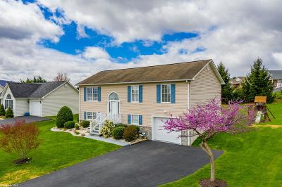 Wythe County Single Family Home For Sale: 395 Pleasant View Drive