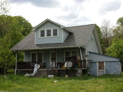 Giles County Single Family Home For Sale: 2542 Lurich Road