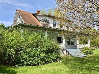 Wythe County Single Family Home For Sale: 136 The Alley