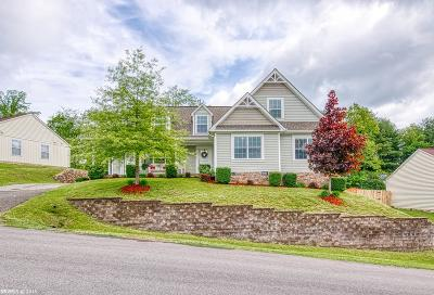 Christiansburg Single Family Home For Sale: 1505 Sherwood Drive