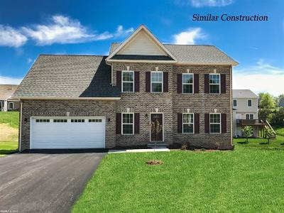 Christiansburg Single Family Home For Sale: 1600 Diana Drive